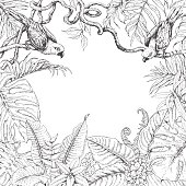 Tropical Plants  and Birds Square Frame