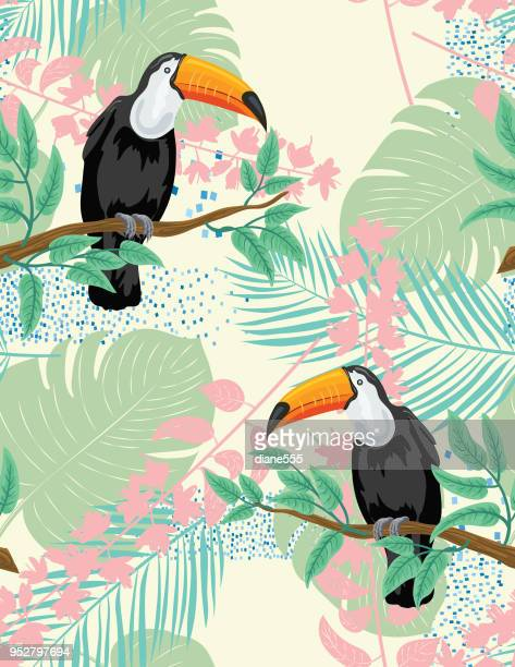 illustrazioni stock, clip art, cartoni animati e icone di tendenza di tropical plants and toucan seamless pattern - clima tropicale