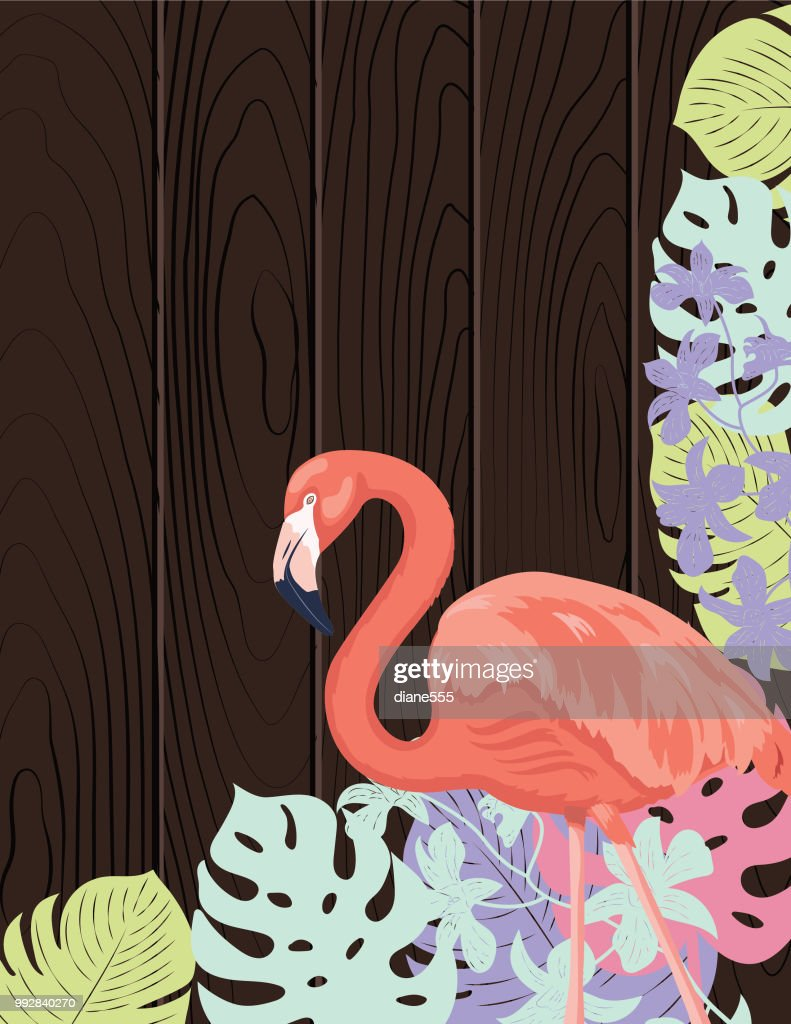 Tropical Plants Background Design template : stock illustration
