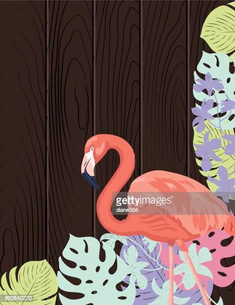 tropical plants background design template - flamingo stock illustrations, clip art, cartoons, & icons