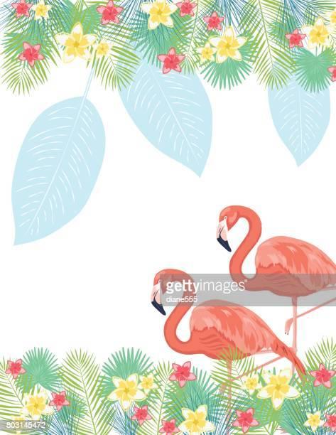ilustrações de stock, clip art, desenhos animados e ícones de tropical plants background - flamingo
