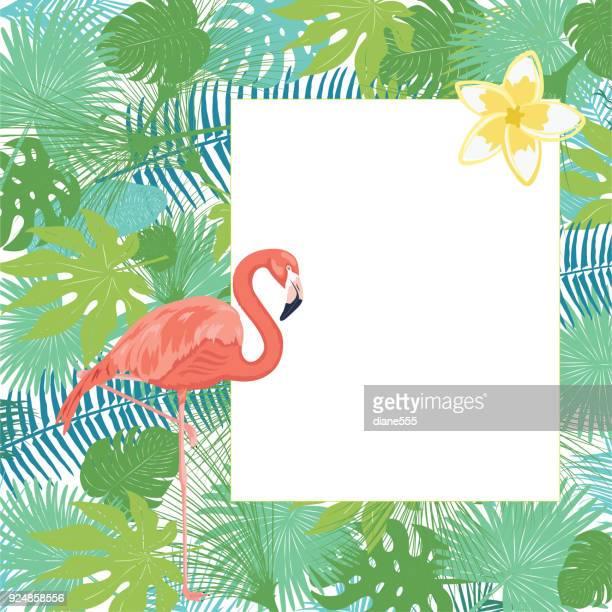 tropical plants background - flamingo stock illustrations, clip art, cartoons, & icons