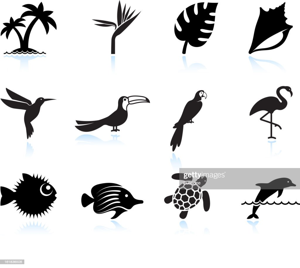 tropical plants fish and birds black & white icon set
