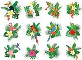 tropical plants leaves flower arrangements with flamingo, parrots, toco toucan,hummingbird, hibiscus, strelitzia, frangipani, heliconia