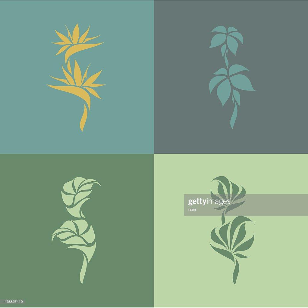 Tropical plants. Set of design elements