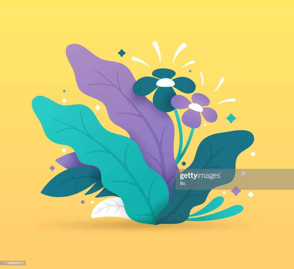 熱帯植物 : ストックイラストレーション