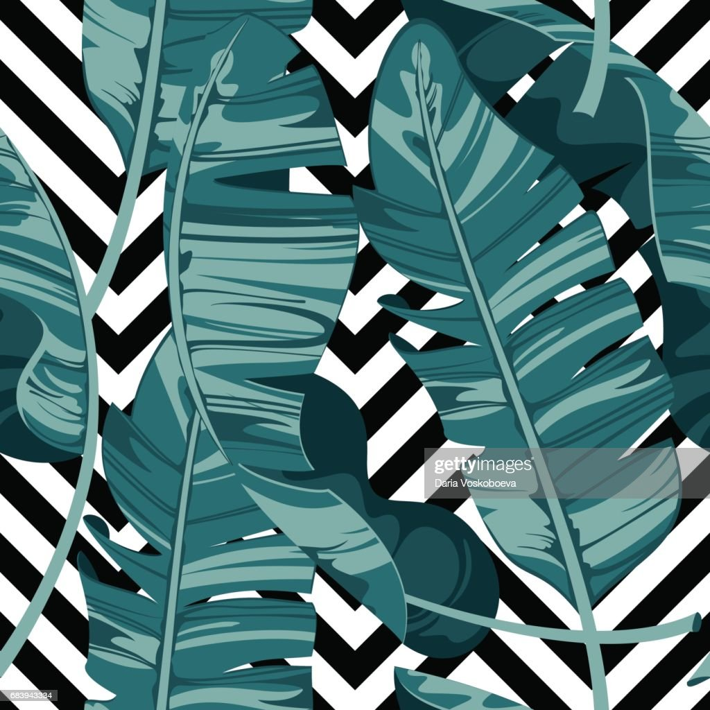 Tropical print summer exotic plant. Banana leaves. Pattern, seamless floral vector. Nature wallpaper on geometric background.