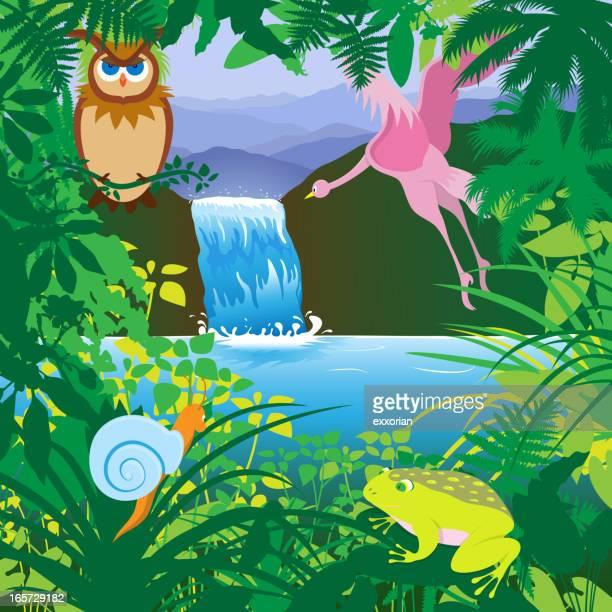 ilustrações de stock, clip art, desenhos animados e ícones de floresta tropical - caracol de jardim