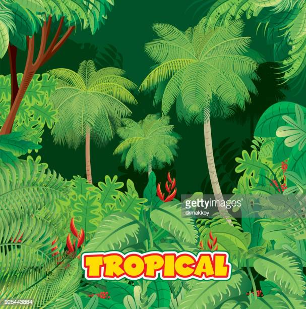 tropical rainforest - bali stock illustrations