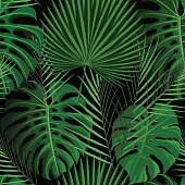 Tropical seamless pattern with exotic palm leaves.