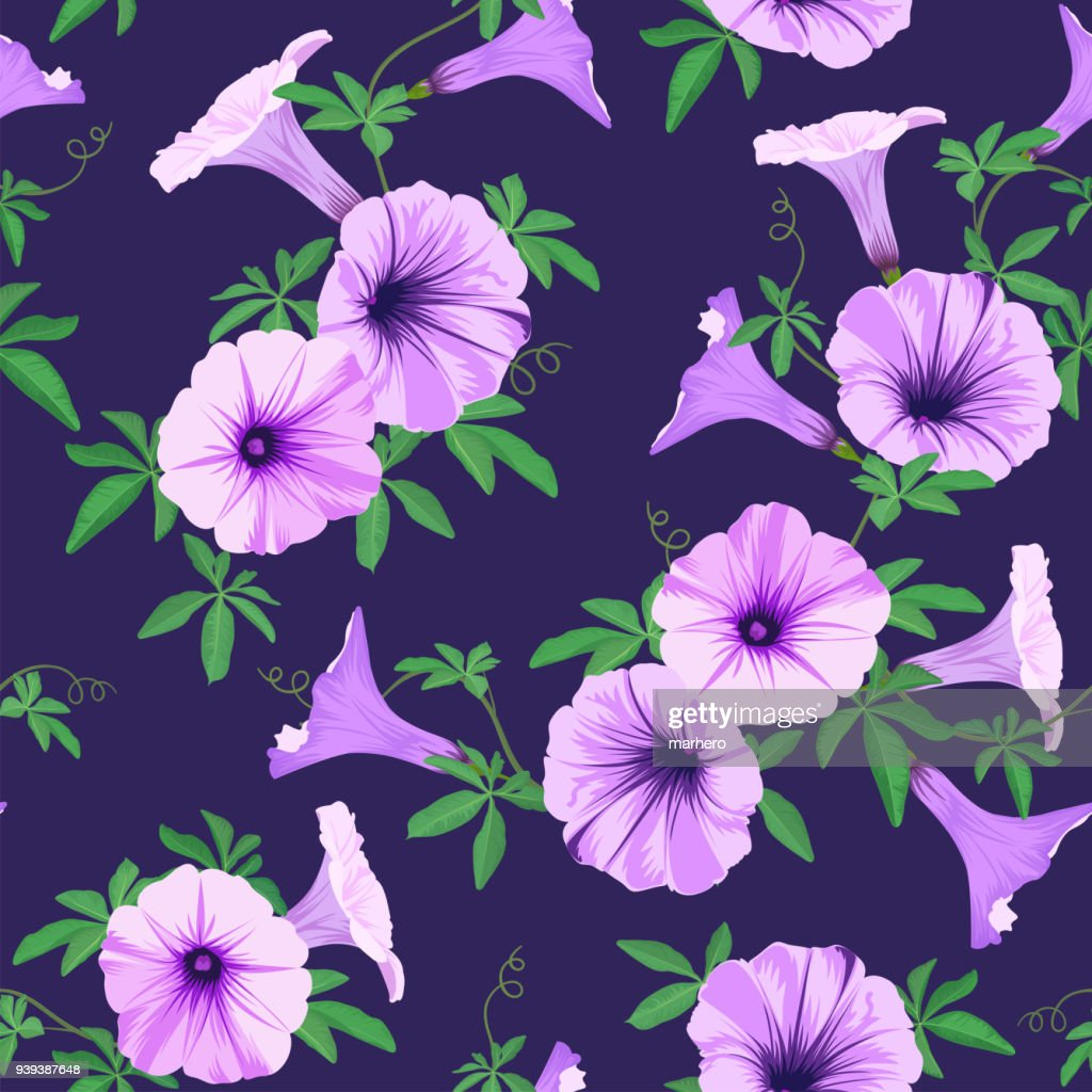 Tropical seamless pattern with morning glory flowers and leaves background.