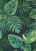 Tropical seamless pattern with palm leaves background.