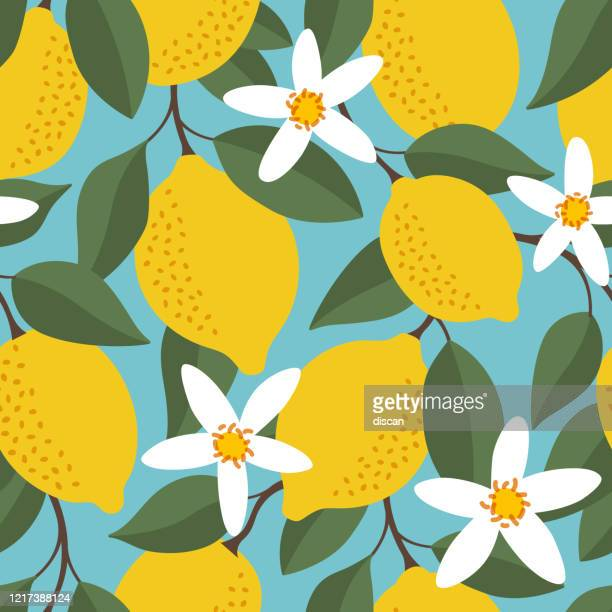 tropical seamless pattern with yellow lemons. fruit repeated background. vector bright print for fabric or wallpaper. - graphic print stock illustrations