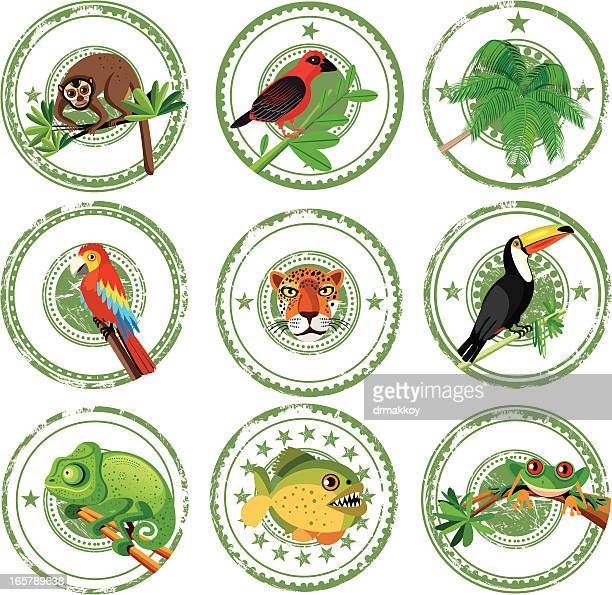 tropical stamps - chameleon stock illustrations, clip art, cartoons, & icons
