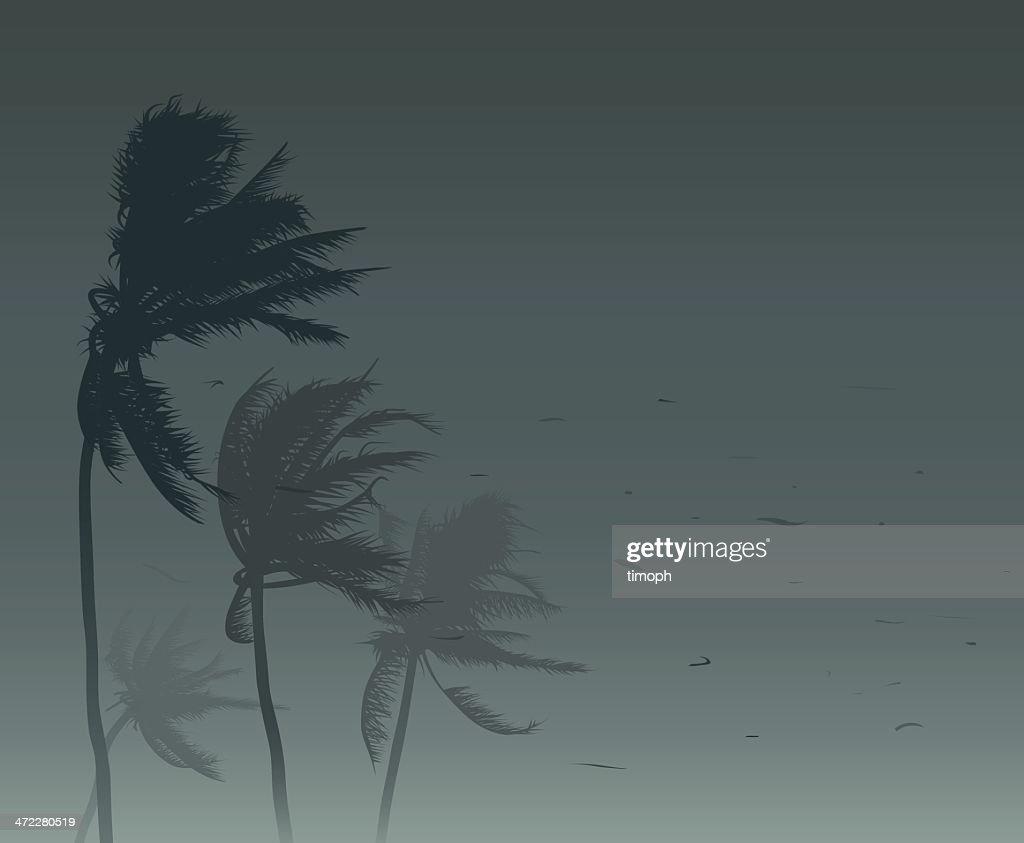 Tropical storm : stock illustration
