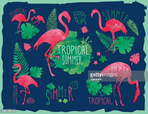tropical summer hand drawn set with flamingos and tropical elements - flamingo stock illustrations, clip art, cartoons, & icons