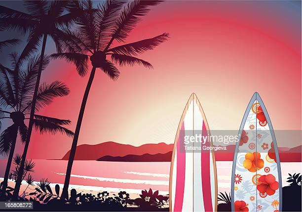 ilustraciones, imágenes clip art, dibujos animados e iconos de stock de puesta de sol tropical - puesta de sol