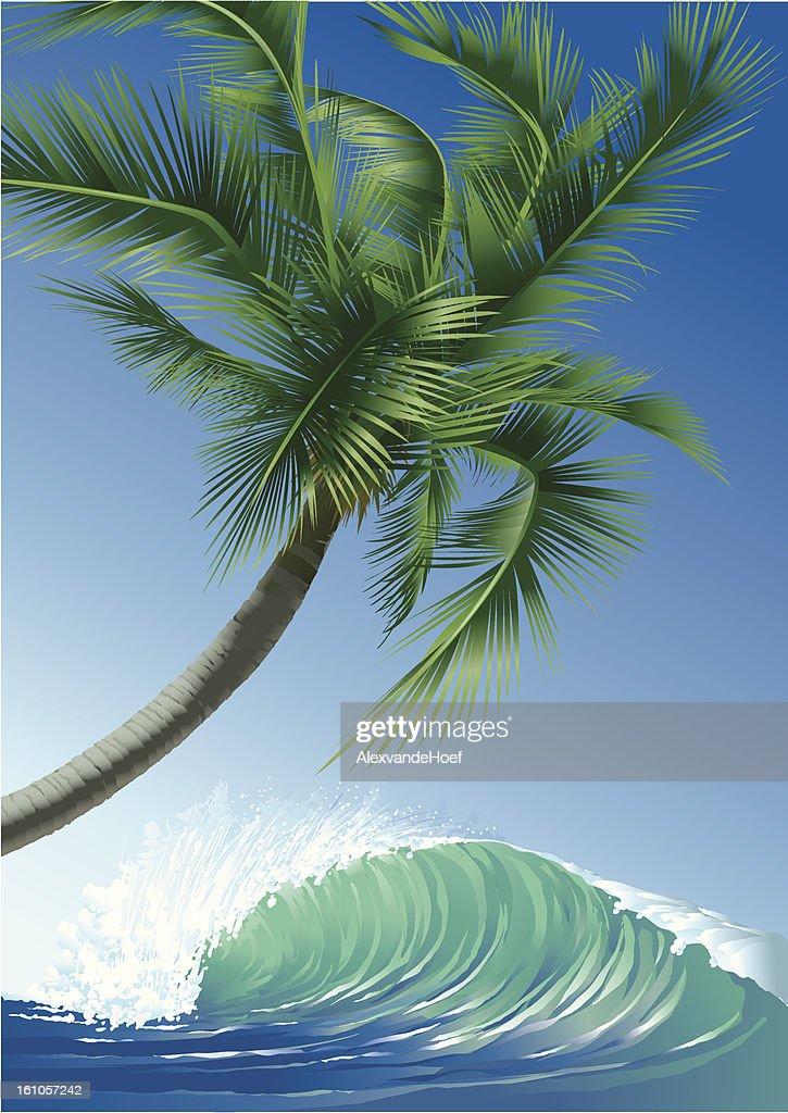Ola y Palmtree Tropical : Arte vectorial