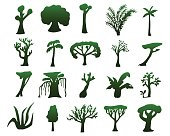 Tropical trees hand-drawn silhouettes. Green silhouettes of exotic plants isolated