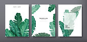 Tropical trendy greeting or invitation card template design, set of poster, flyer, brochure, cover, party advertisement, dark green palm leaves in vector