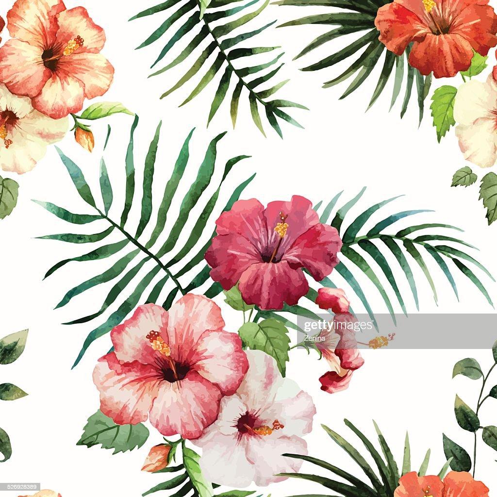 Tropics1