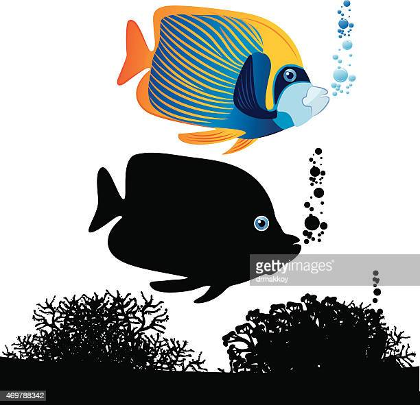 ttropical fish - butterflyfish stock illustrations, clip art, cartoons, & icons