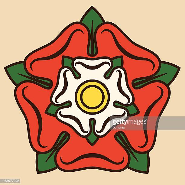 tudor rose - rosa stock illustrations