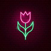 Tulip Neon Sign