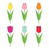 Tulips set icon. Flowers collection isolated on white background.
