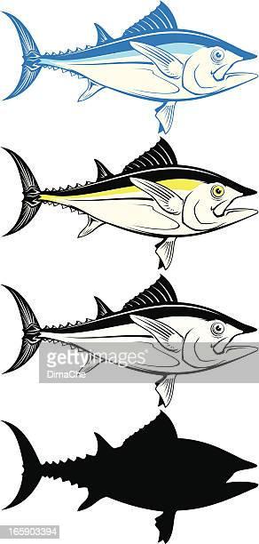 ilustraciones, imágenes clip art, dibujos animados e iconos de stock de atún de peces - bonito del norte