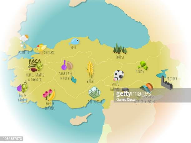 turkey map with icons - istock images stock illustrations