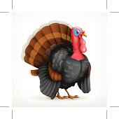 Turkey, vector icon