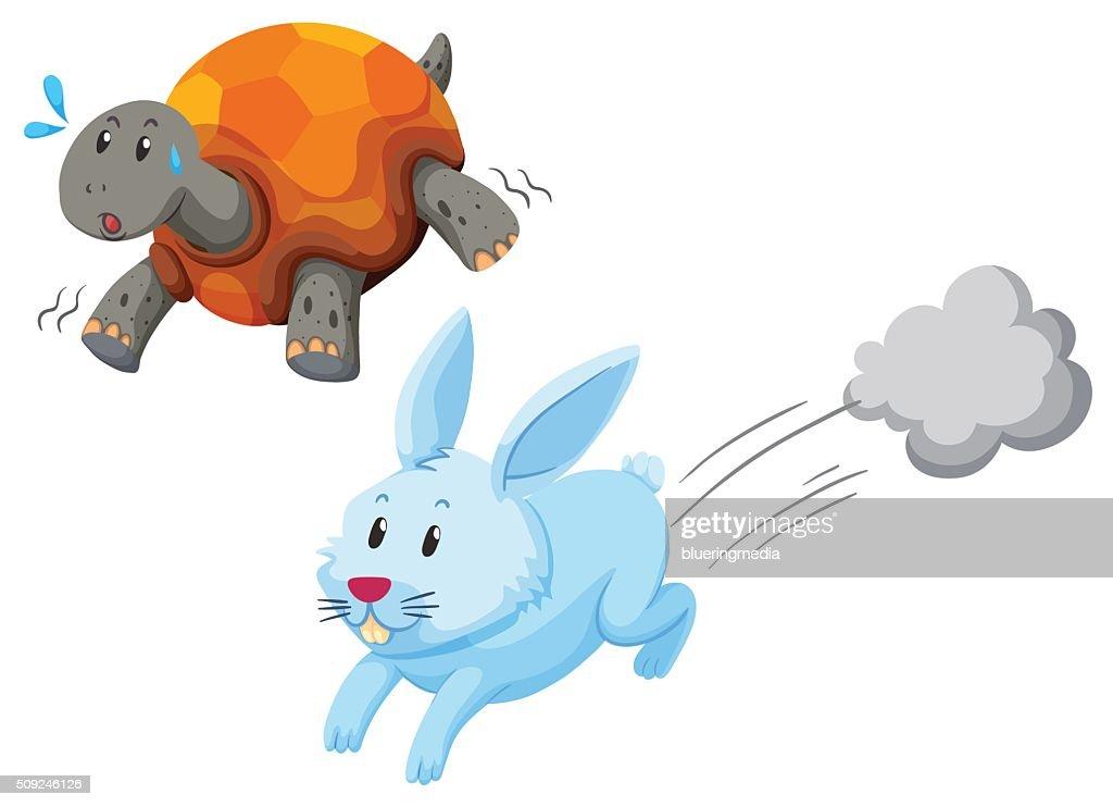 Turtle and rabbit racing