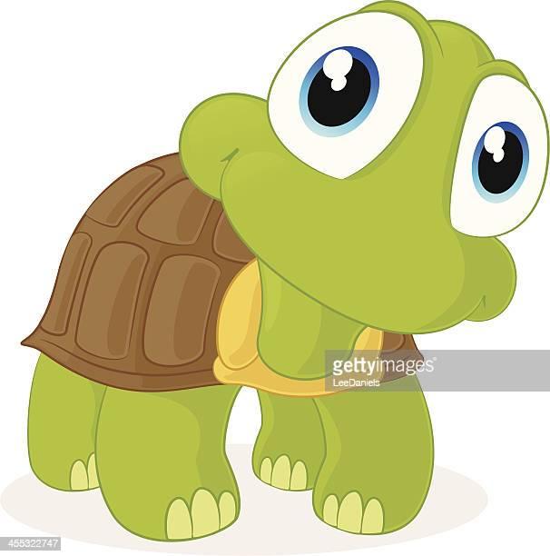 ilustraciones, imágenes clip art, dibujos animados e iconos de stock de tortuga de bebé - tortugas