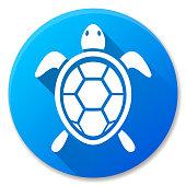 turtle blue circle icon design