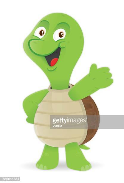 Turtle cartoon character mascot illustration