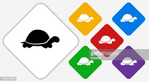 Turtle Color Diamond Vector Icon