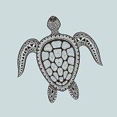Turtle. Hand Drawn aquatic doodle vector illu