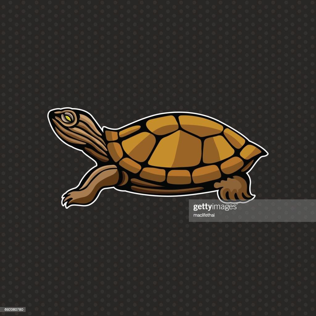 turtle icon design template ,turtle head icon Vector illustration