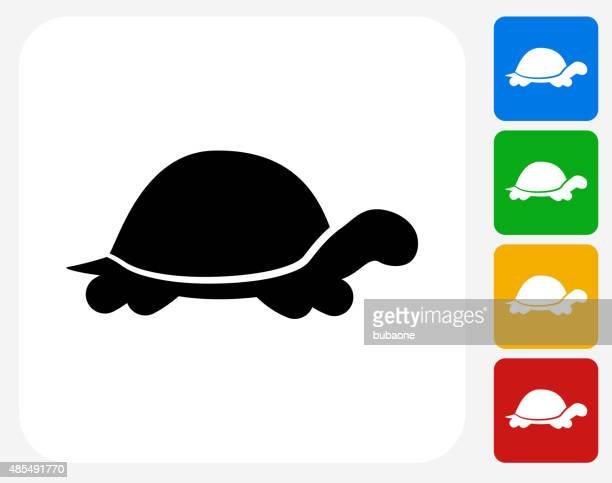 Turtle Icon Flat Graphic Design