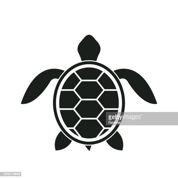 b739d21c6 60 Top Turtle Stock Illustrations, Clip art, Cartoons and Icons ...