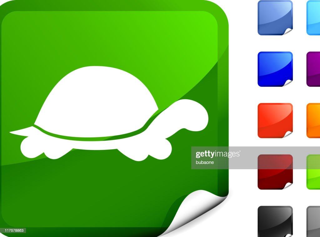 turtle internet royalty free vector art