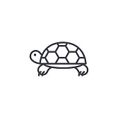 turtle vector line icon, sign, illustration on background, editable strokes
