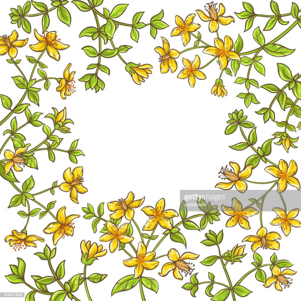tutsan branch vector frame