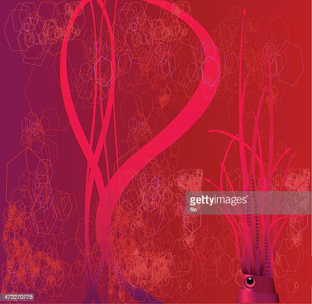 Twilight Squid [vector]
