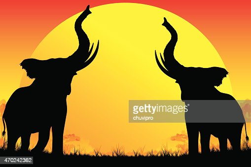 two african elephants silhouettes are trumpeting on hot sun background vector art getty images