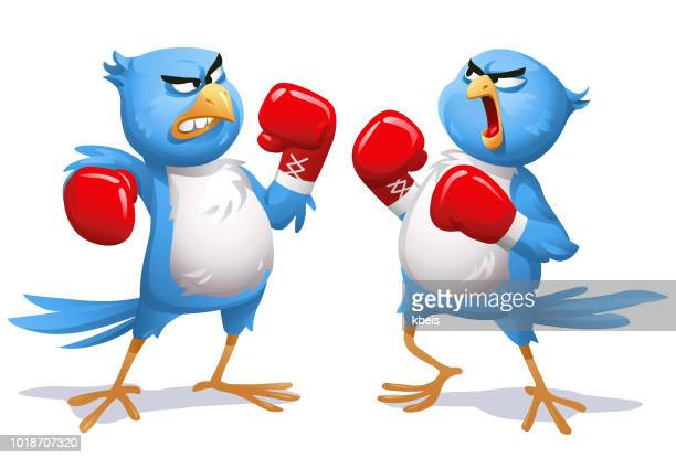 two angry blue birds boxing - anti bullying symbols stock illustrations