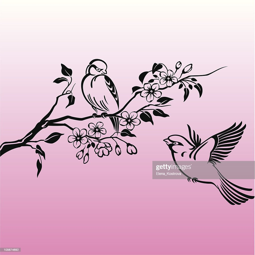 Two birds on branch in the spring