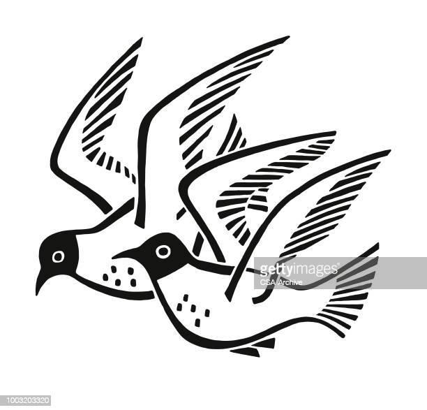 2 つの鳥