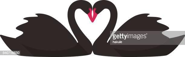2つの黒い白鳥が水泳に直面する - 同性のカップル点のイラスト素材/クリップアート素材/マンガ素材/アイコン素材